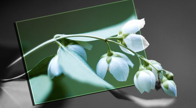Modificare immagini: i migliori software di fotoritocco