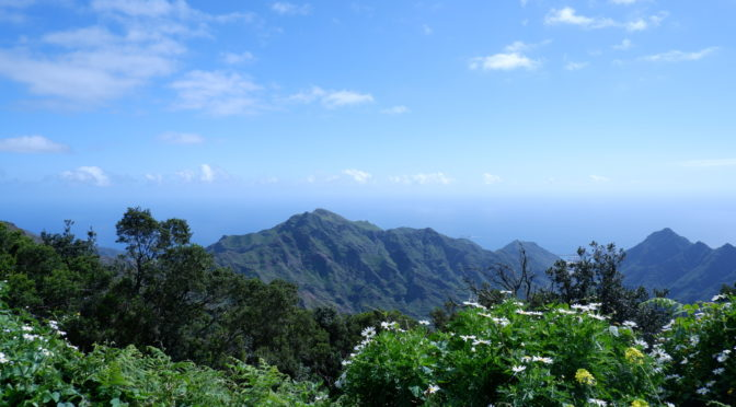 Cosa vedere a Tenerife: top 15 attrazioni